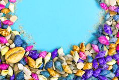 Colorful seashells background with copy space stock images