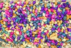 Colorful seashells background stock photos