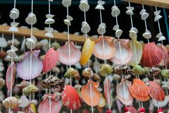 Colorful seashells in decoration in tropical sea marine life. Decoration made of colorful seashells from the sea. Red, yellow, green and white big and small stock photo