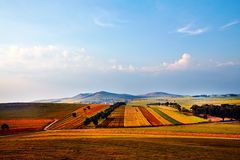 A colorful season in Bashang grassland Royalty Free Stock Images