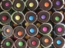 Chocolate cupcakes. Colorful seasonal sweets Royalty Free Stock Image