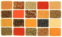 Colorful seasoning Stock Images