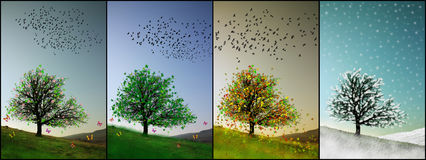 Colorful seasons illustration Stock Images