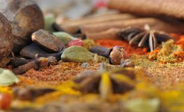 Colorful seeds and powder Stock Images