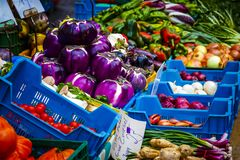 Colorful selection of vegetables on the farmers market in Mainz.  Royalty Free Stock Photography