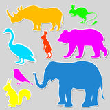 Colorful set of animals Royalty Free Stock Images