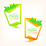 Colorful set of banners with fresh green leaves Royalty Free Stock Image