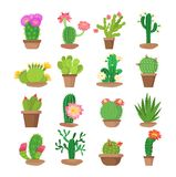 Colorful set of bright home blooming cacti in pots. Cactus flower in pots bright home blooming cacti. Collection of exotic home decorative plants with flowers vector illustration