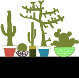 Colorful set with cactus in pot Stock Images