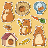 Colorful set of cute hamsters and objects, stickers Stock Image
