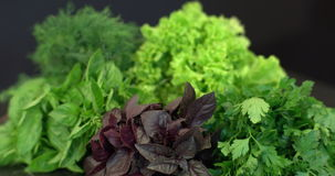Colorful set of green salad on the kitchen table stock video