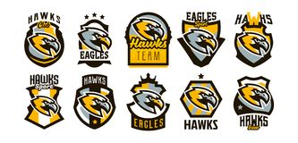 A colorful set of logos, stickers, emblems of a hawk and an eagle. A formidable hawk, a hunter, a predator, a dangerous. Animal, a lettering, a shield. Mascot royalty free illustration