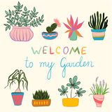 Colorful set of pot plants. Colorful gardening illustration, Hand drawing set of pot plants stock illustration