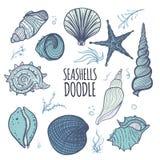 Colorful set of seashells on white background Royalty Free Stock Photography
