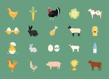 Colorful set of vector farm animals and produce. With hen and egg  carrot  turkey  cabbage  dairy and beef cows  rabbit  sheep  milk can  duck  pig  hay chicken Stock Photo