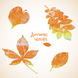 Colorful set of watercolor leaves Stock Photography