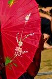 Colorful Shade Umbrella Royalty Free Stock Image
