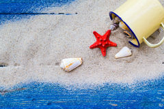 Colorful shells cup sand strewn blue boards Stock Image