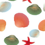 Colorful shells and red starfishes, seamless pattern, transparent background. Royalty Free Stock Photos