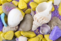 Colorful shells. Stones sand rocks Royalty Free Stock Images