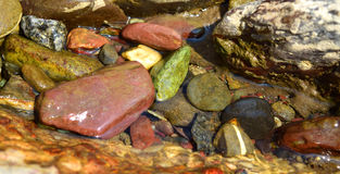 Colorful and Shiny River Rocks! Royalty Free Stock Image