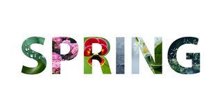 Colorful sign on white background. Word spring Royalty Free Stock Images
