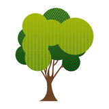Colorful silhouette big leafy tree with zigzag and wave lines inside. Illustration Stock Images