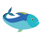 Colorful silhouette with sea fish blue. Vector illustration Royalty Free Stock Photos