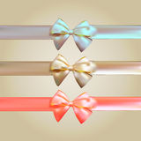 Colorful Silk Ribbon with Bow Set Royalty Free Stock Photo