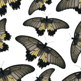 Colorful simple vector butterflies seamless pattern Royalty Free Stock Photography