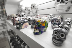 Colorful skeleton models lying on a shelf Royalty Free Stock Photos
