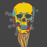 Colorful skull with ornament Stock Photo