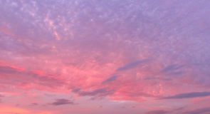 Colorful sky. Beautiful sunset. The beautiful colorful sky Royalty Free Stock Photography