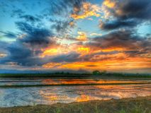 Colorful sky Stock Images