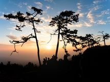 Colorful sky and silhouette of people seeing sunrise at Phukradueng National Park, Thailand.  royalty free stock photos