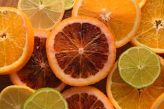 Colorful sliced citrus fruit Stock Photography