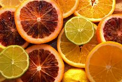 Colorful sliced citrus fruit Royalty Free Stock Images