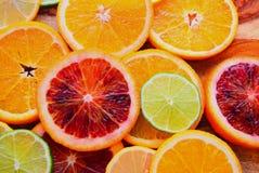Colorful sliced citrus fruit Stock Photos