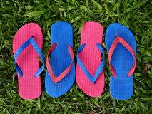 Colorful Slippers or Flip Flops Stock Photo