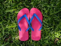 Colorful Slippers or Flip Flops Stock Image
