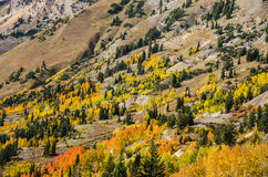Colorful Slope Royalty Free Stock Image