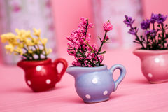 Colorful Small Decorative Artificial Plants in Colorful Pots Stock Image