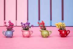 Colorful Small Decorative Artificial Plants in Colorful Pots Royalty Free Stock Photos