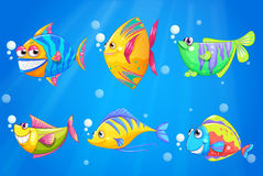 Colorful and smiling fishes under the sea Royalty Free Stock Photo