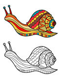 Colorful snail and snail in black and white for coloring book. Pattern in doodle style. Vector illustration Royalty Free Stock Photos