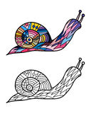 Colorful snail and snail in black and white for coloring book. Pattern in doodle style. Vector illustration Stock Photo