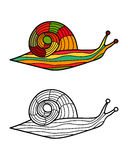Colorful snail and snail in black and white for coloring book. Pattern in doodle style. Vector illustration Stock Images