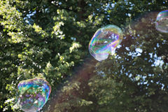 Colorful soap bubble in the air. Highly reflective colorful soap bubble floating in the air Stock Photos