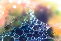 Colorful soap bubble macro closeup royalty free stock photo