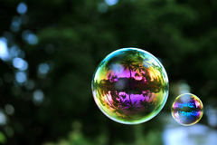 Colorful soap bubbles with coconut palms reflection, macro Stock Photo